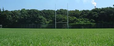 競技用芝の管理