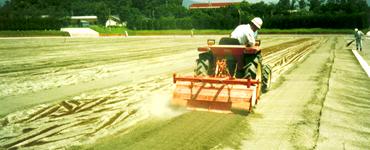 床土・芝生の診断サービス